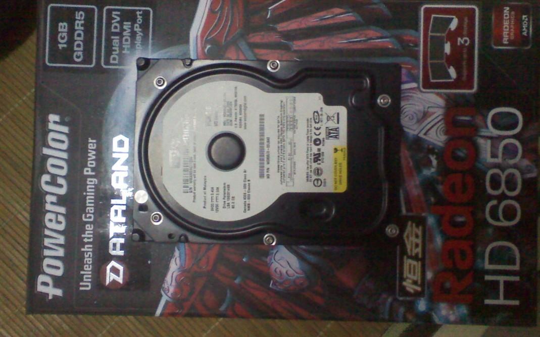 台机硬盘wd80g